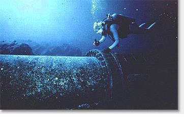 Spirulina - Deep Sea Diver Water Source